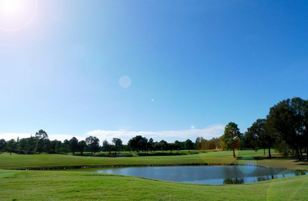 ゴルフボールダイバー_ゴルフ場の池