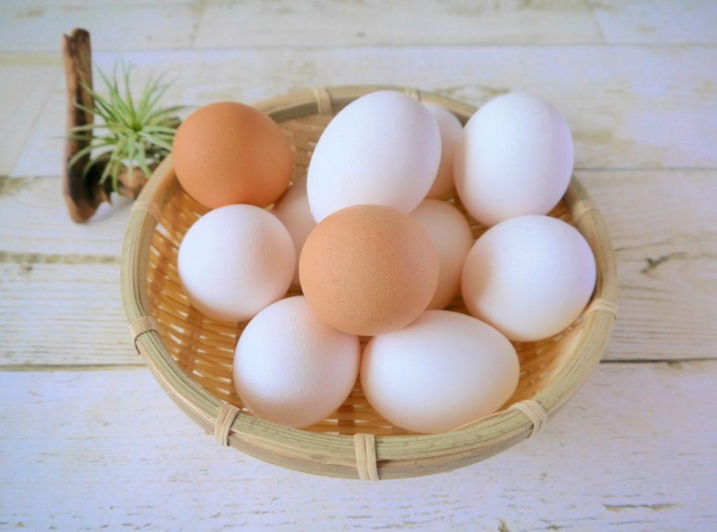 スペインの朝食_スパニッシュオムレツ_卵