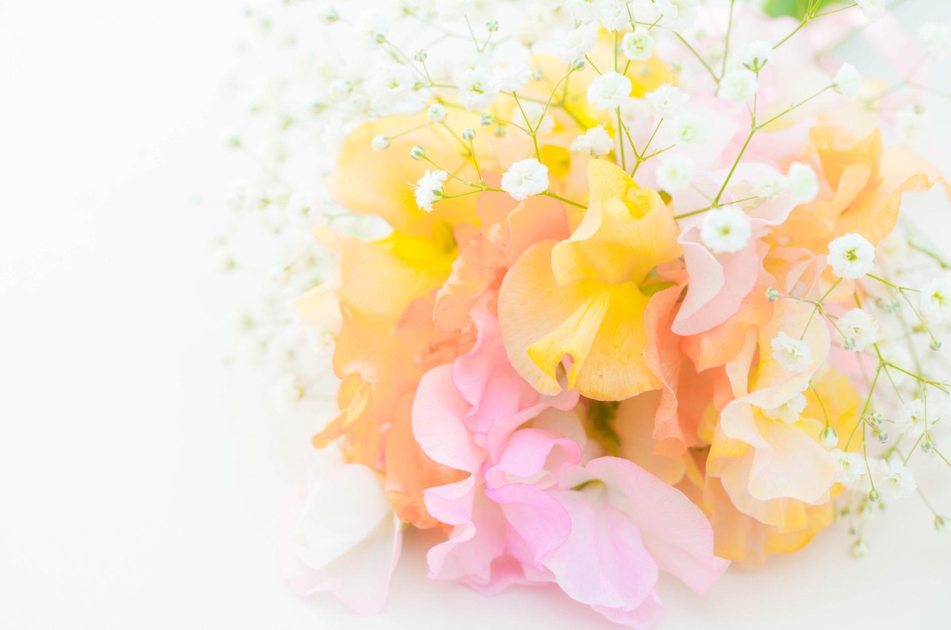 お花の定期便サービス比較