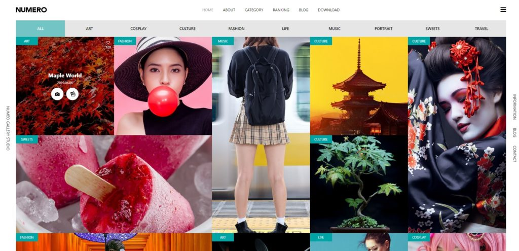 wordpress-theme-numero-tcd070_ファーストビュー