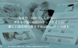 wordpress-theme-birth-tcd057